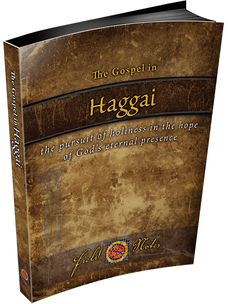 Haggai-3D-right